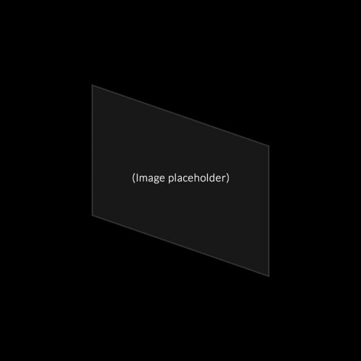 Placeholder caption